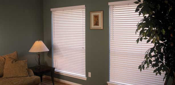 Pro Decor Blinds